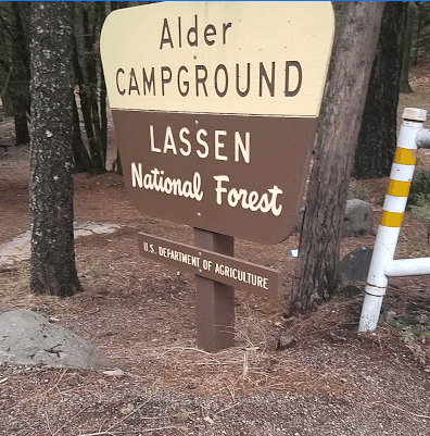 Alder Campground near Lake Almanor camping in Lassen National Forest