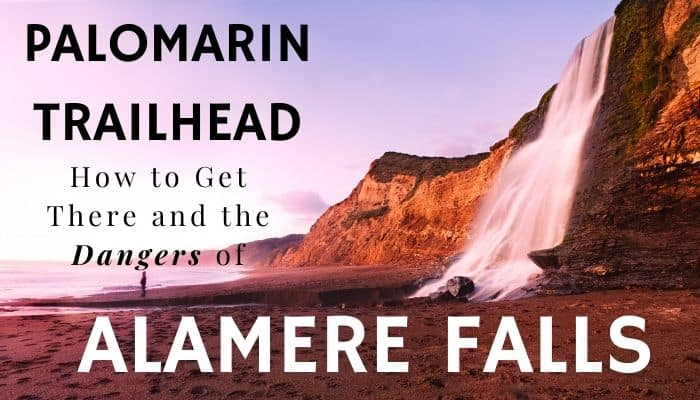 Palomarin Trailhead - How You Can Find It and Dangers of Alamere Falls