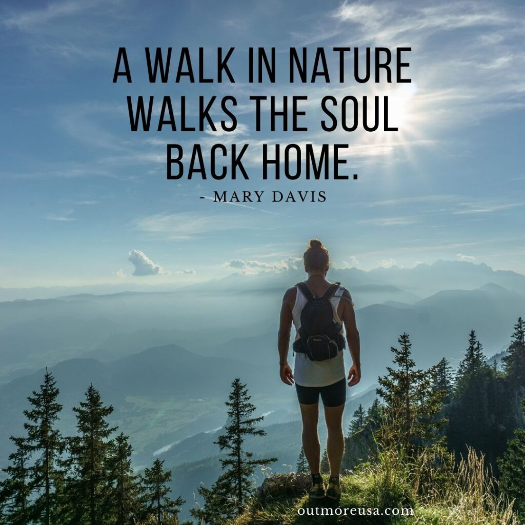 """A walk in nature walks the soul back home."" - Mary Davis quotes 