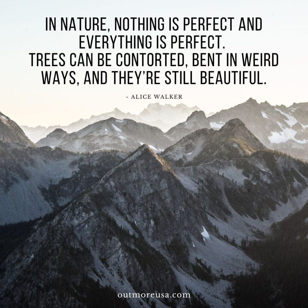 """In nature, nothing is perfect and everything is perfect. Trees can be contorted, bent in weird ways, and they're still beautiful."" - Alice Walker quotes 