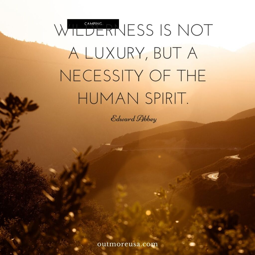 """Wilderness is not a luxury, but a necessity of the human spirit."" - Edward Abbey quotes 
